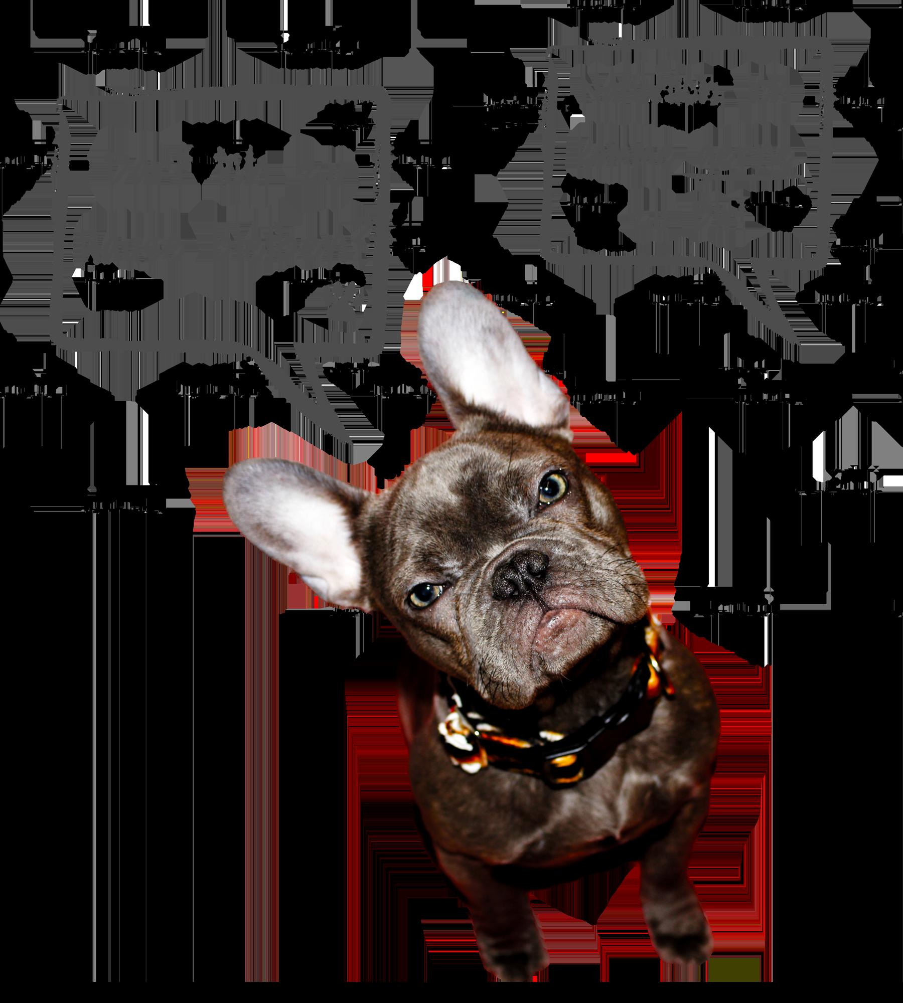 Hund mit Sprechblase